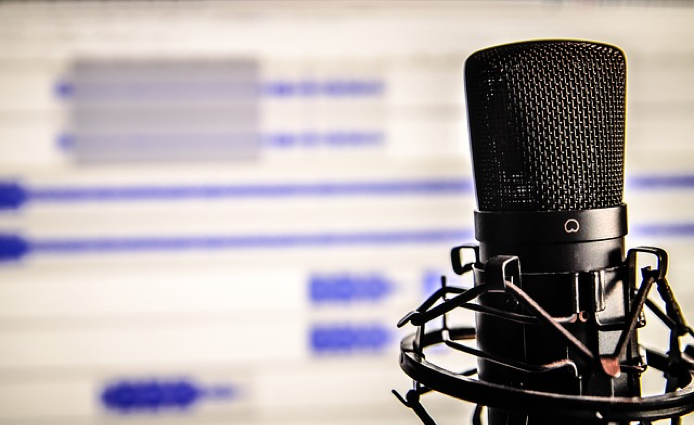 Attributes of a voice over artist